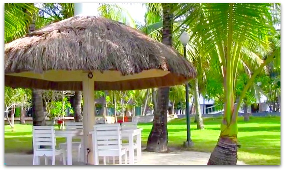 Traditional Huts and coconut trees are all over Cordova Reef Village Resort