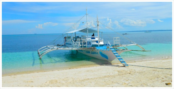 This is the type of transport (called bangka, pumpboat, outrigger, etc.) for Cebu island hopping, transporting goods & guests.