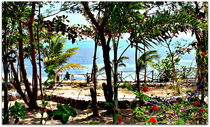 Seaview from Nature Park and Resort