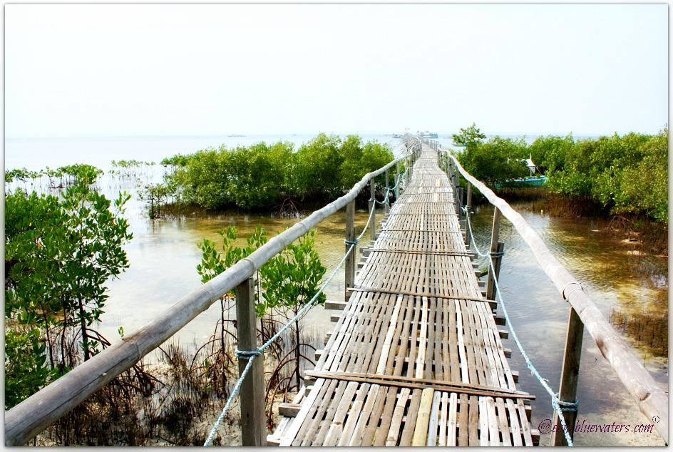 Olango Island Ecotourism
