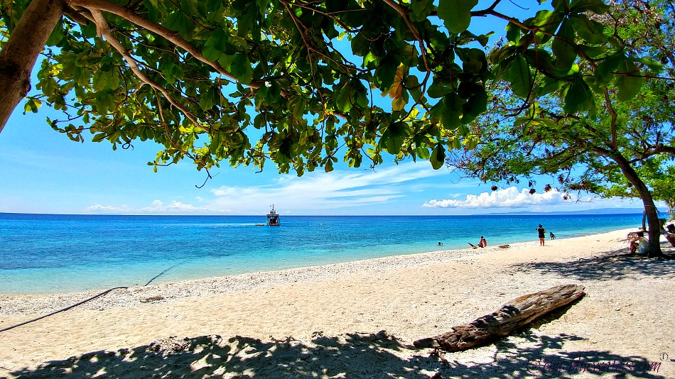 cebu-beaches