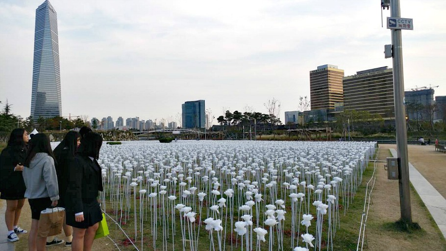 white-roses-songdo-incheon