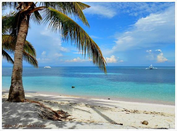 This is the famous Bounty Beach on Malapascua Island, Daanbantayan Municipality in Cebu, Philippines.
