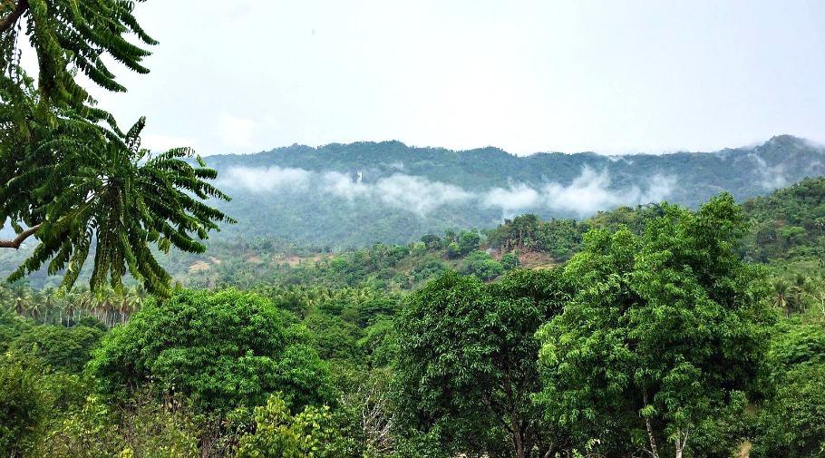 lava-mountain-river-farm