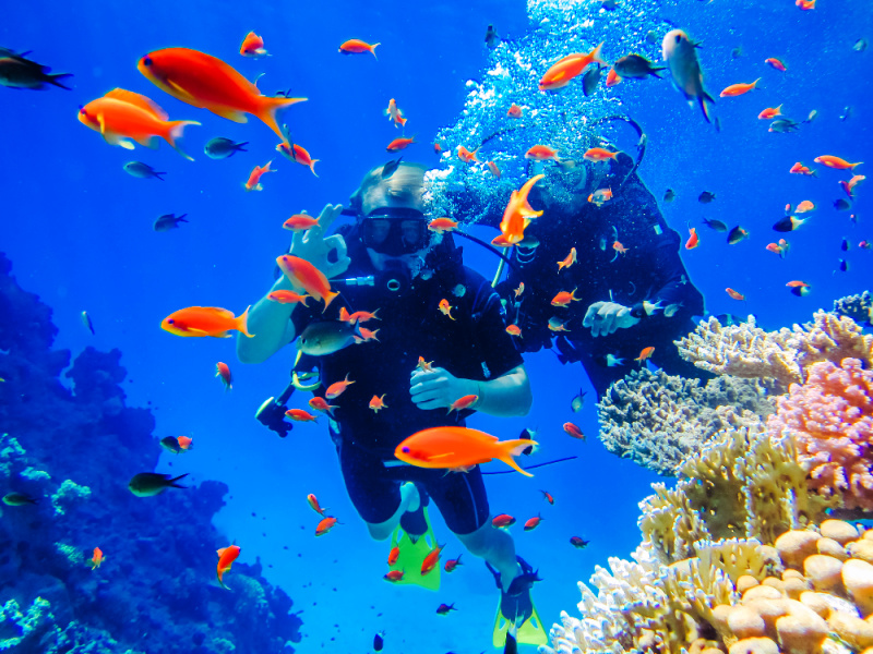 malapascua-scuba-diving