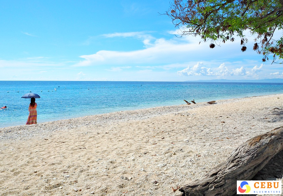 cebu-beach-resorts