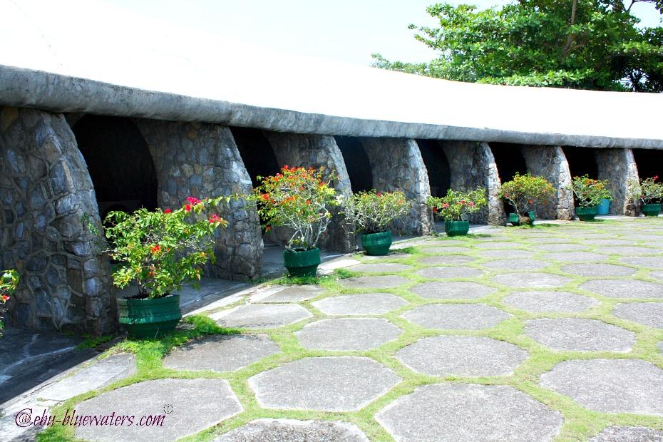 The Tops Bougainvillea